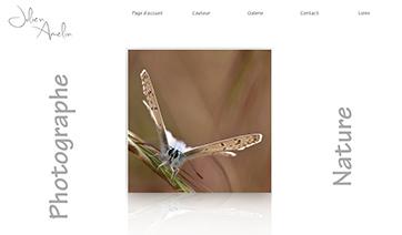 site-Julien-Amelin